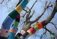 U Vrnjačkoj Banji oplemenjena stabla u  parku